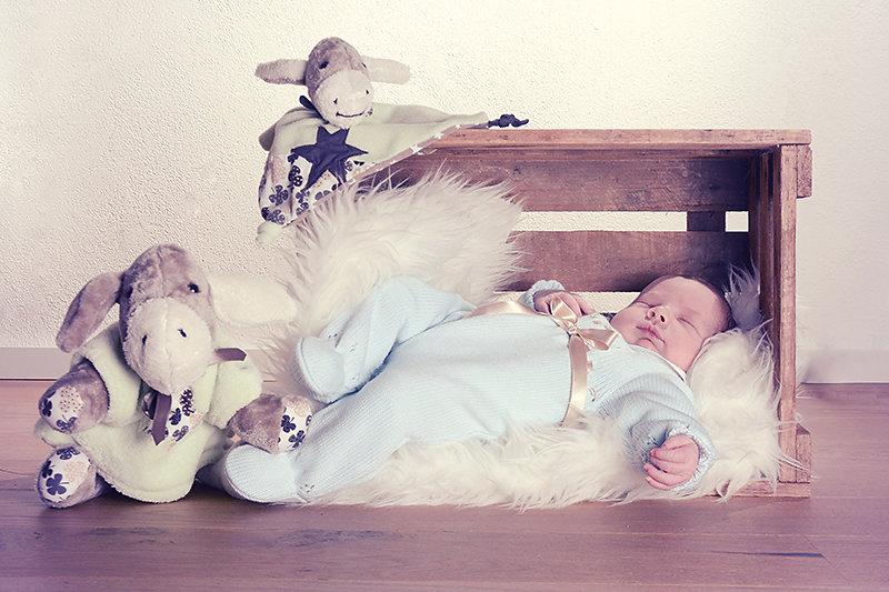 Babybfotos-10.jpg